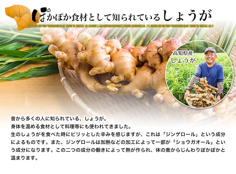 高知県産の生姜を使用