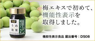 umekouka1.jpg